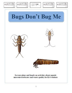 bugs-dont-bug